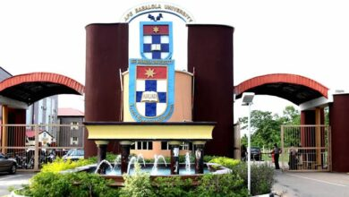 A picture of Afe Babalola University's building