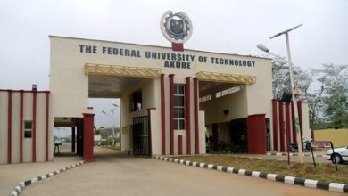 A picture of The Federal University of Technology Akure