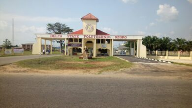 A picture of Delta State Polytechnic